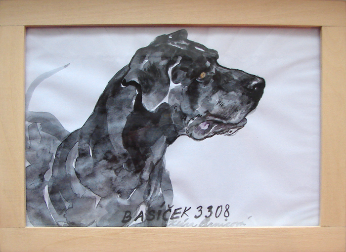 portrait of a dog (2008, aquarelle, 24 x 17 cm)