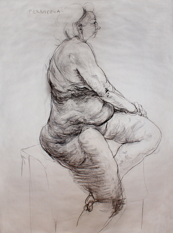 Study (2008, carbon on paper, 210 x 120 cm)