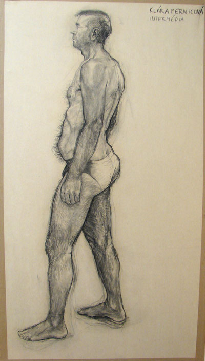 Study (2007, carbon on paper, 230 x 120 cm)