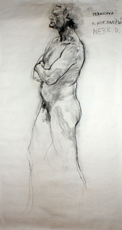 Study (2008, carbon on paper, 230 x 120 cm)