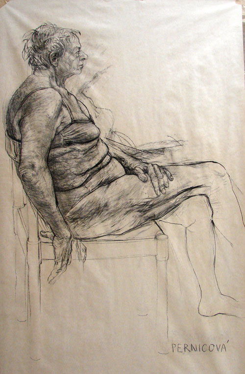 Study (2007, carbon on paper, 220 x 120 cm)